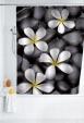 WO20962 - Douchegordijn Bloom