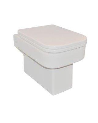Sanistar Ko toilet met bril voorzien van softclose sluiting